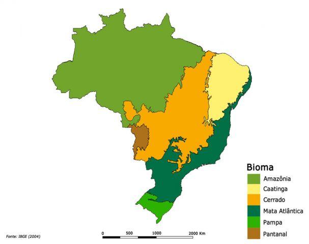 Abordagem nacional para ações de REDD+ no Brasil