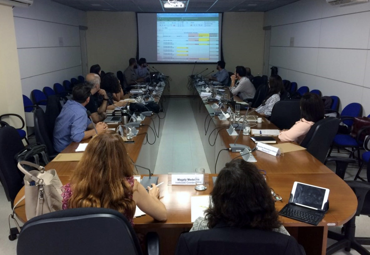 Câmara Consultiva debate pacto federativo e REDD+
