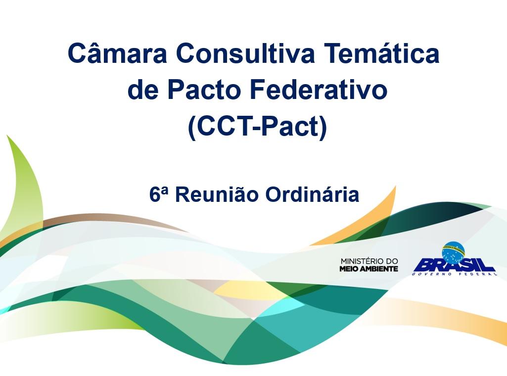 CCT-Pacto Federativo avalia resultados do mapeamento de iniciativas estaduais