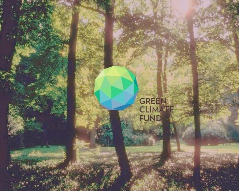 Webinar sobre a proposta brasileira de REDD+ ao GCF