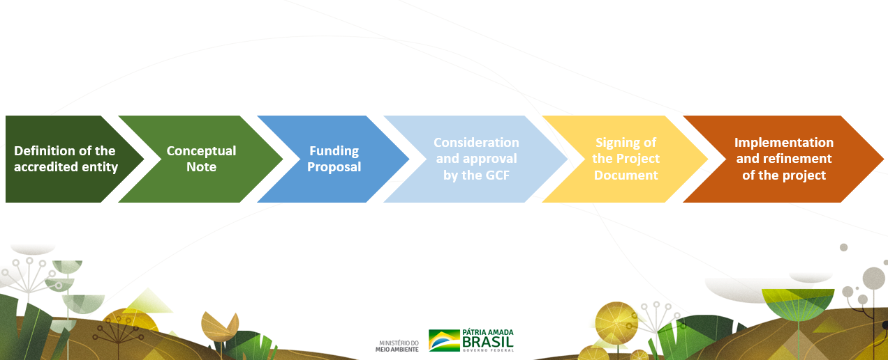 UNDP will be the accredited entity for Brazil's proposal to the GCF