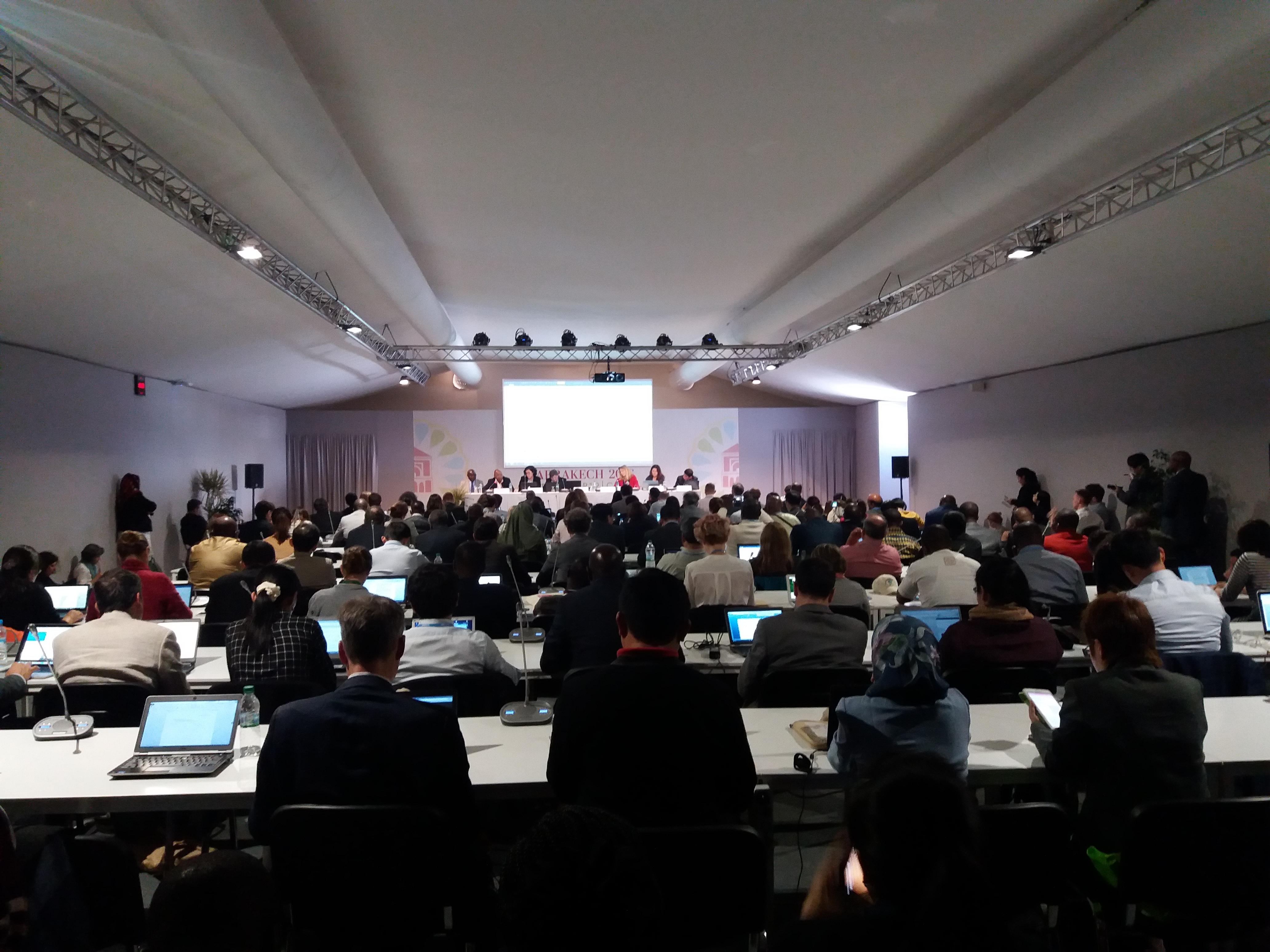 COP22: Fundo Verde para o Clima promove diálogo sobre REDD+