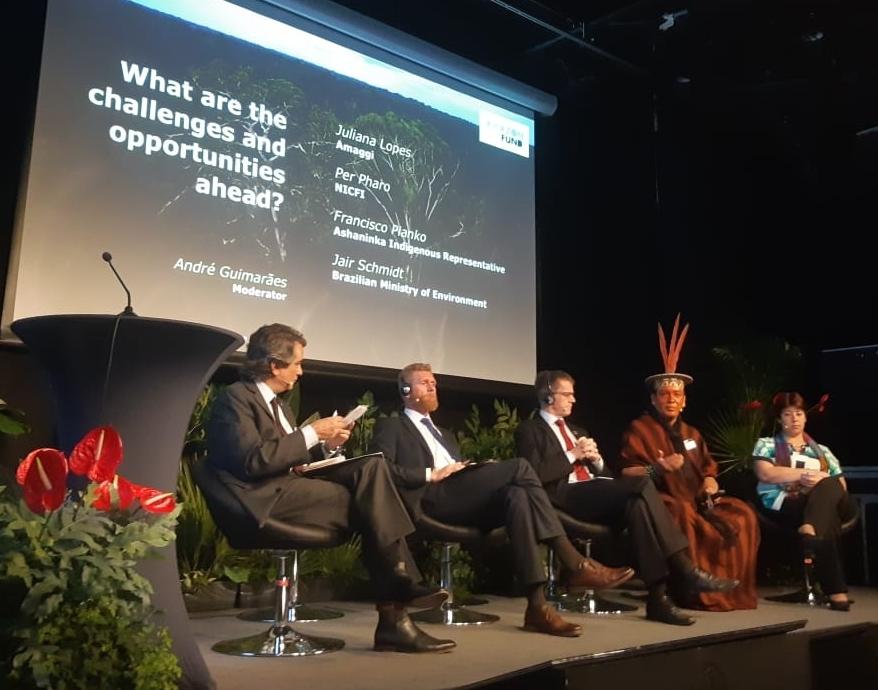 Fundo Amazônia comemora 10 anos