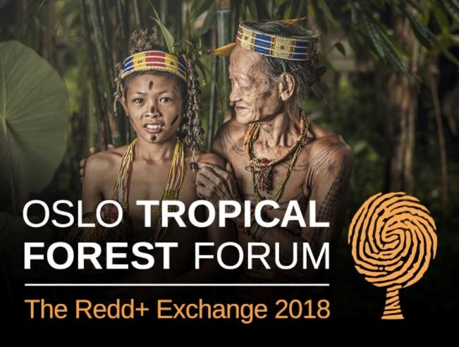 Fórum de Florestas Tropicais 2018