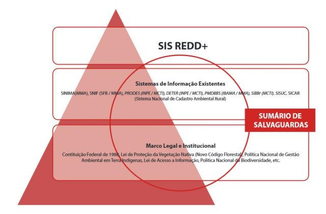 Salvaguardas de REDD+ serão tema de oficinas regionais